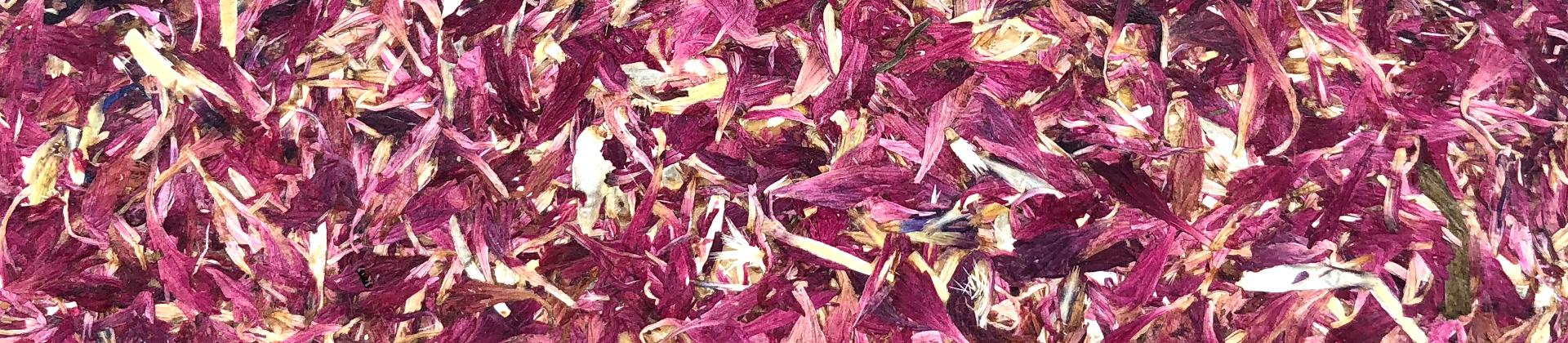 Einlagenmaterial rote Kornblumen